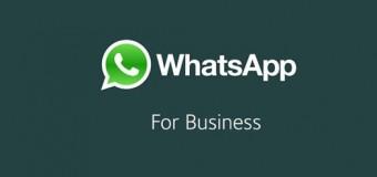 Bingung Menggunakan WhatsApp Business ? Ini Cara Untuk Menggunakanya